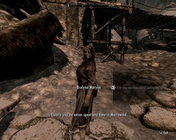 Oh, I've spent more time in Morrowind than you can imagine.